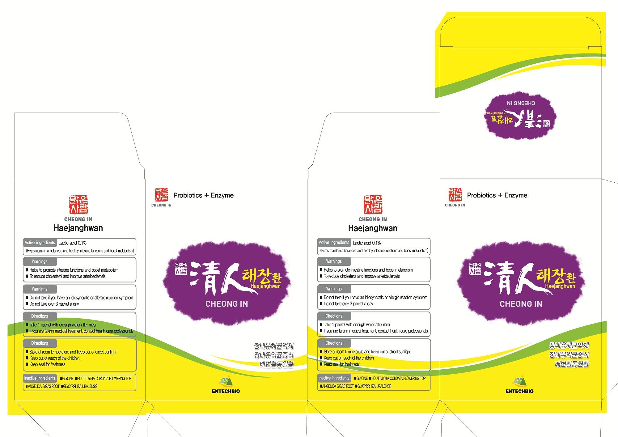 Cheongin Haejanghwan (Lactic Acid) Pellet [Entechbio Co., Ltd]