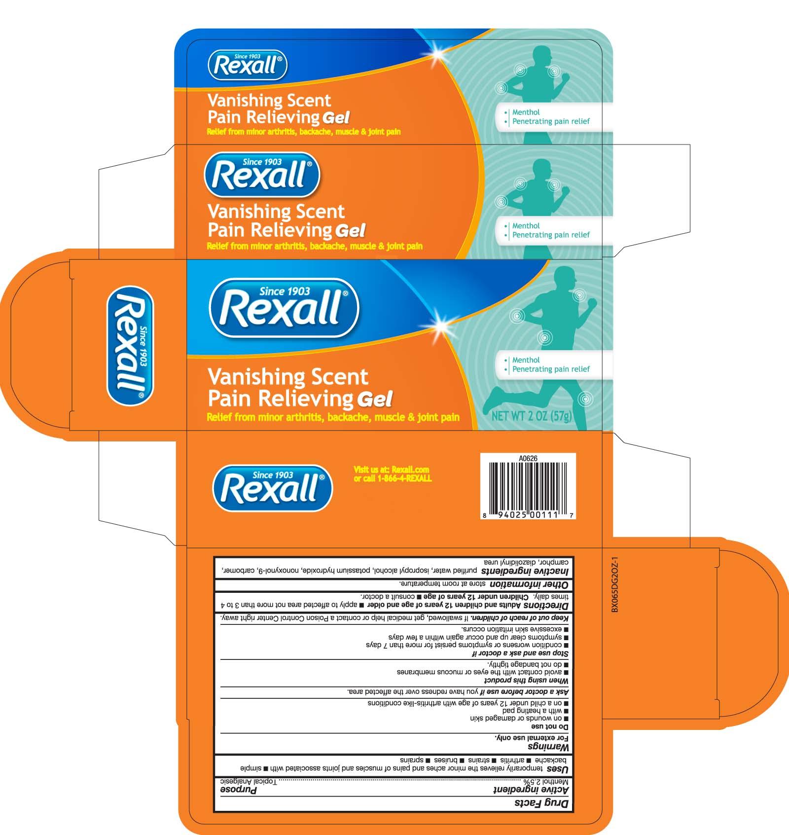 Rexall Vanishing Scent Pain Relieving (Menthol) Gel [Dolgencorp, Llc]