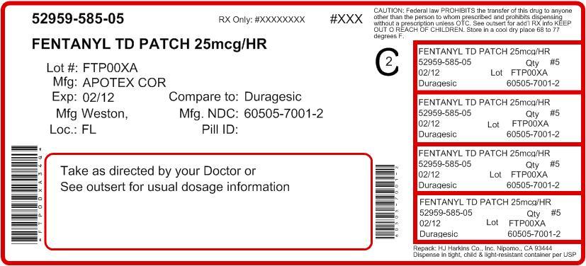 Principal Display Panel - 25 mcg/hr Carton