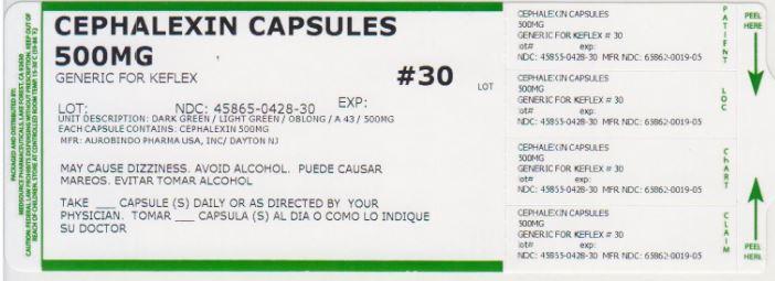 Cephalexin Capsule [Medsource Pharmaceuticals]