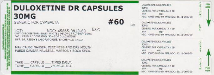 Duloxetine Capsule, Delayed Release Pellets [Medsource Pharmaceuticals]