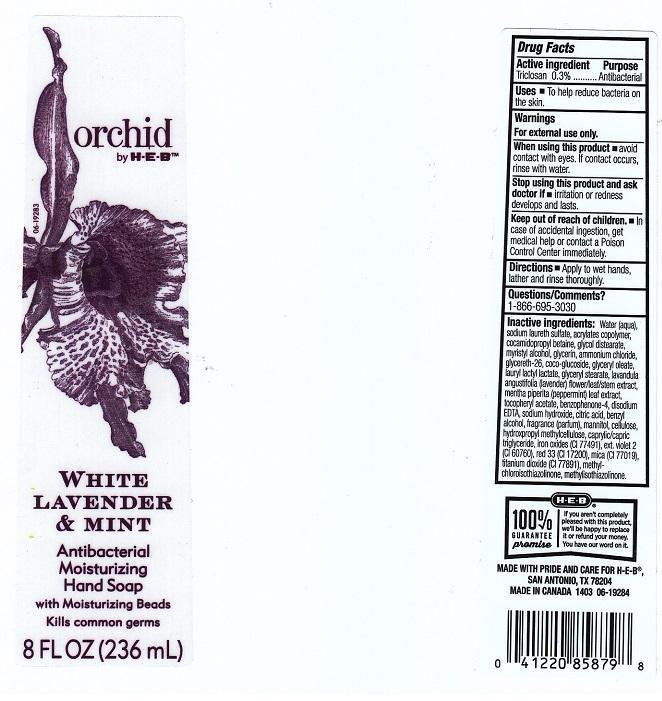 Orchid By H E B White Lavender And Mint (Triclosan) Liquid [H E B]
