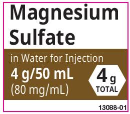 PRINCIPAL DISPLAY PANEL - 40 mg/mL Bag Label - 100 mL