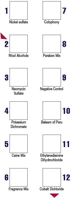 Panel 1.3-1