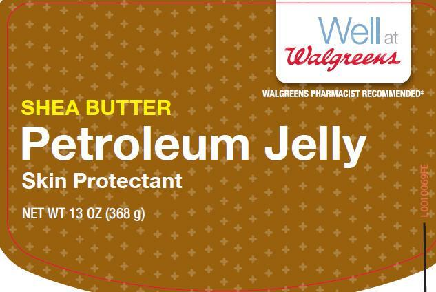 Petroleum (White Petrolatum) Jelly [Walgreen Co]