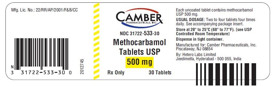 valtrex drug information