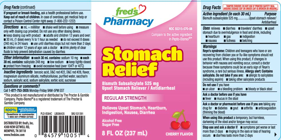 Stomach Relief Cherry (Bismuth Subsalicylate) Liquid [Freds Inc]