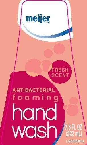Hand Wash (Benzalkonium Chloride) Liquid [Meijer Distribution]