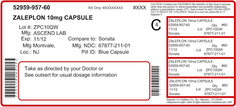 Zaleplon Capsule 10 mg - Container Label