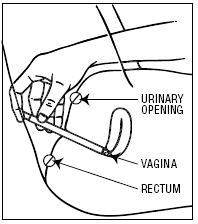 Instruction 4