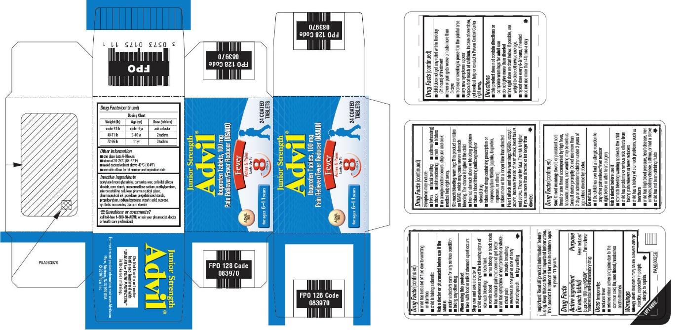 PRINCIPAL DISPLAY PANEL - 100 mg Tablet Bottle Carton