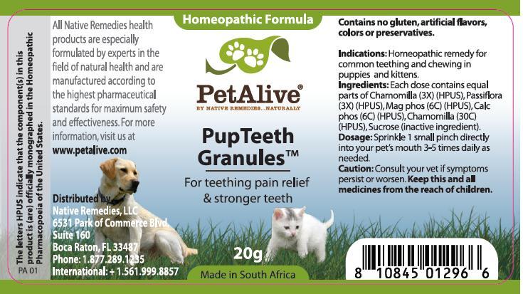 Pupteeth (Chamomilla, Passiflora, Mag Phos, Calc Phos, Chamomilla) Granule [W. Last Cc]