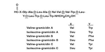 Gramicidin Chemical Structure