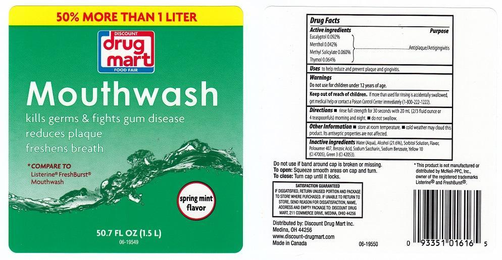 Discount Drug Mart Spring Mint Mouthwash (Eucalyptol, Menthol, Methyl Salicylate, Thymol) Liquid [Discount Drug Mart]