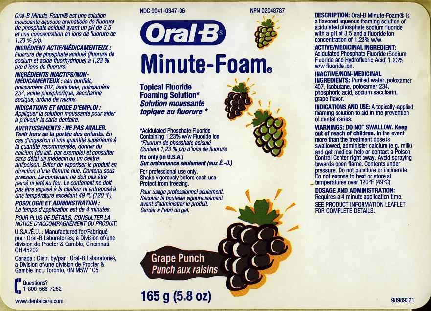 Oral-b Minute-foam Grape Punch (Acidulated Phosphate Fluoride) Aerosol [Oral-b Laboratories]