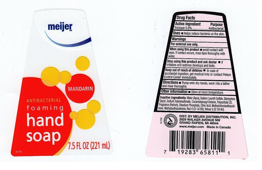 Antibacterial Foaming (Triclosan) Liquid [Meijer Distribution Inc]