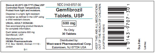 Gemfibrozil Tablets, USP 600 mg/30 Tablets