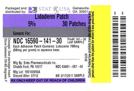 qualitest lidocaine patch package insert