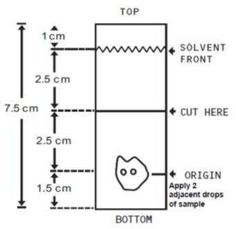 TLC Plate Diagram