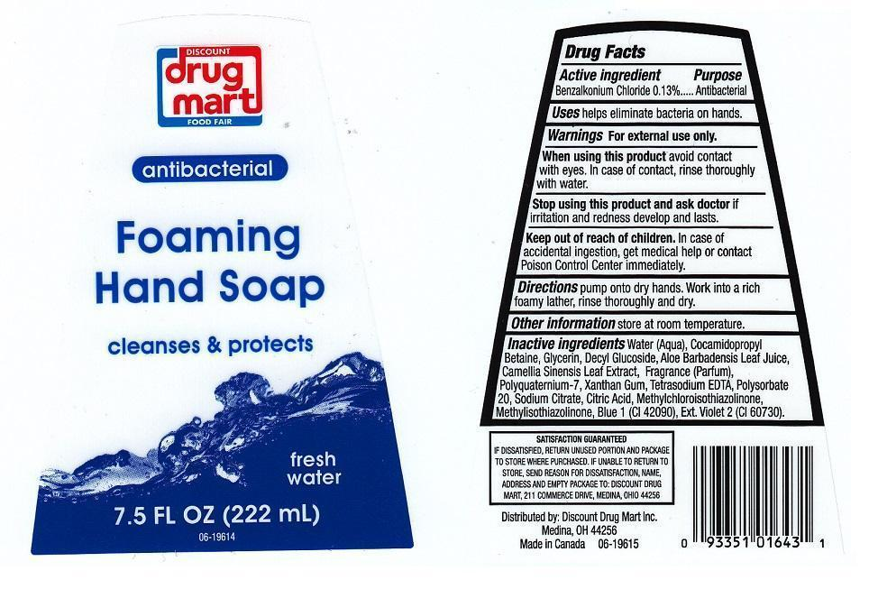 Discount Drug Mart Antibacterial Foaming Fresh Water (Benzalkonium Chloride) Liquid [Discount Drug Mart]
