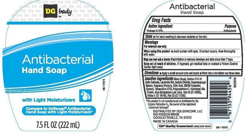 Dg Body Antibacterial (Triclosan) Liquid [Dolgencorp Inc.]
