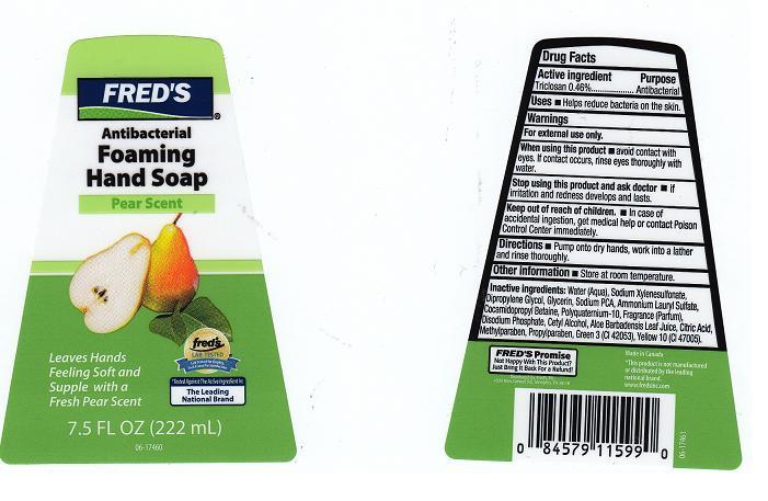 Antibacterial Foaming (Triclosan) Liquid [Fred's Inc]
