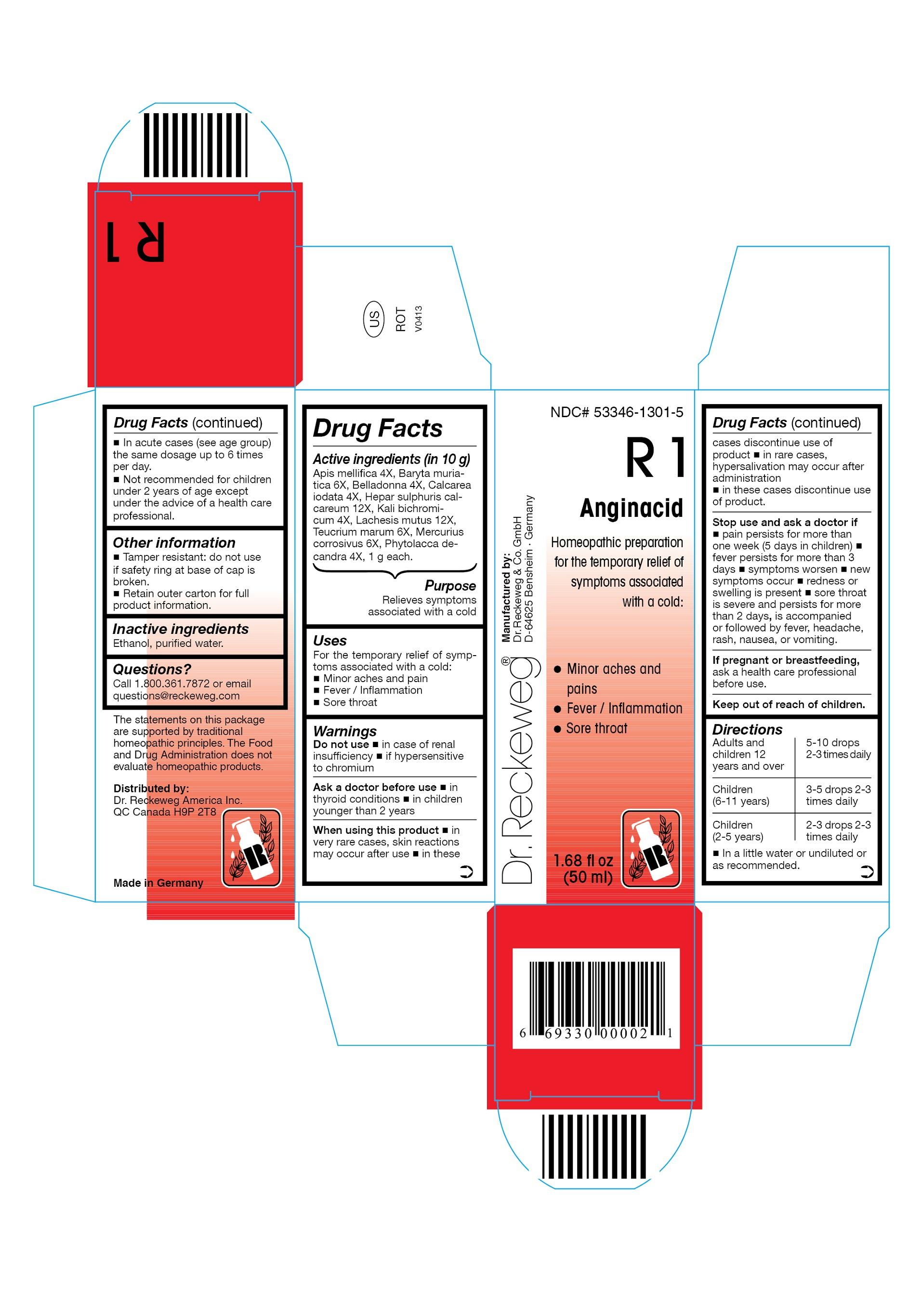 Dr. Reckeweg R1 Anginacid Combination Product (Apis Mellifica 4x, Baryta Muriatica 6x, Belladonna 4x, Calcarea Iodata 4x, Hepar Sulphuris Calcareum 12x, Kali Bichromicum 4x, Lachesis Mutus 12x, Teucrium Marum 6x, Mercurius Corrosivus 6x, Phytolacca Decandra 4x) Liquid [Pharmazeutische Fabrik Dr. Reckeweg & Co]