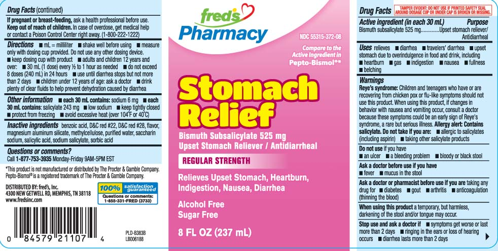 Stomach Relief Regular Strength (Bismuth Subsalicylate) Liquid [Freds Inc]