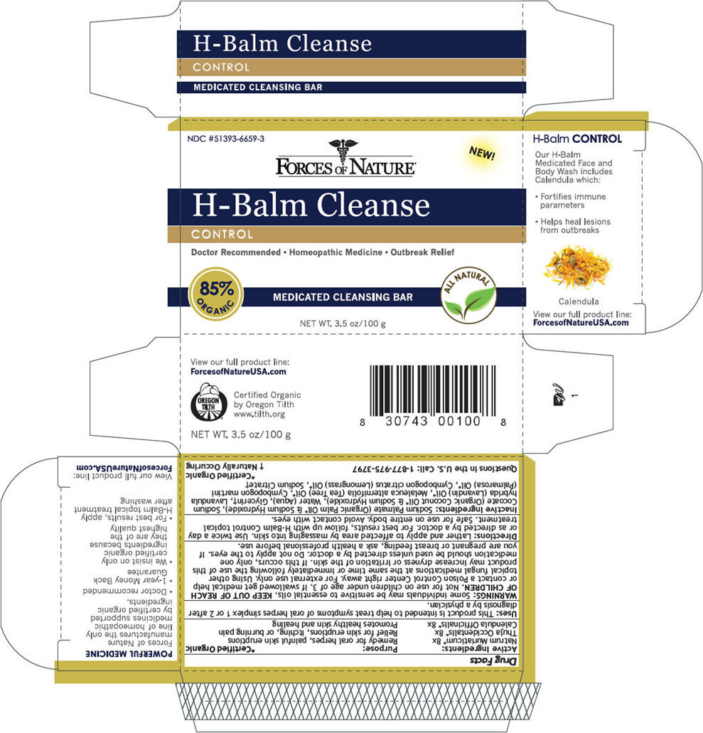 H-balm Cleanse (Sodium Chloride, Thuja Occidentalis Bark, And Calendula Officinalis Flowering Top) Soap [Forces Of Nature]