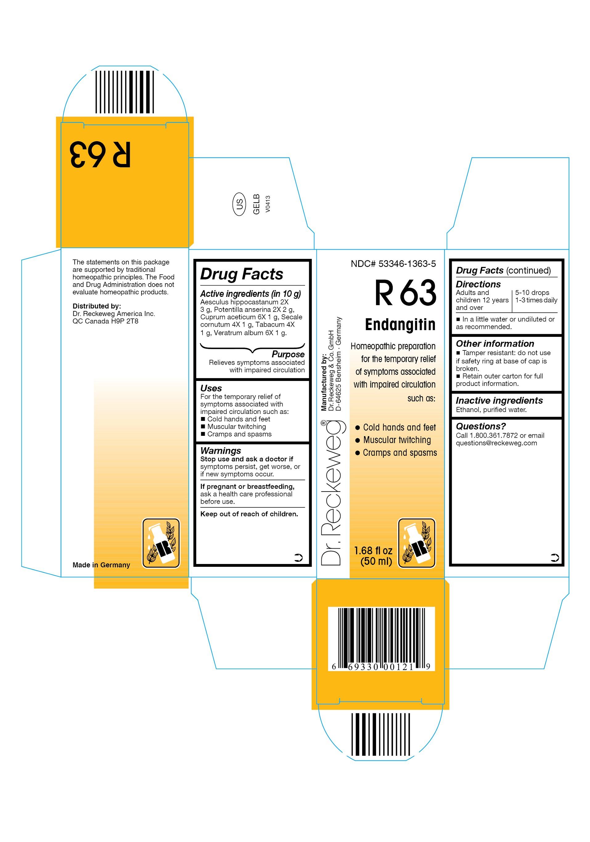 Dr. Reckeweg R63 Endangitin Combination Product (Aesculus Hippocastanum 2x, Potentilla Anserina 2x, Cuprum Aceticum 6x, Secale Cornutum 4x, Tabacum 4x, Veratrum Album 6x) Liquid [Pharmazeutische Fabrik Dr. Reckeweg & Co]