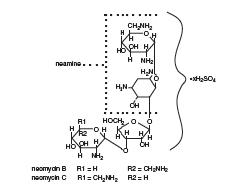 Neomycin Sulfate (structural formula)