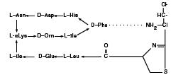 Bacitracin Zinc (structural formula)