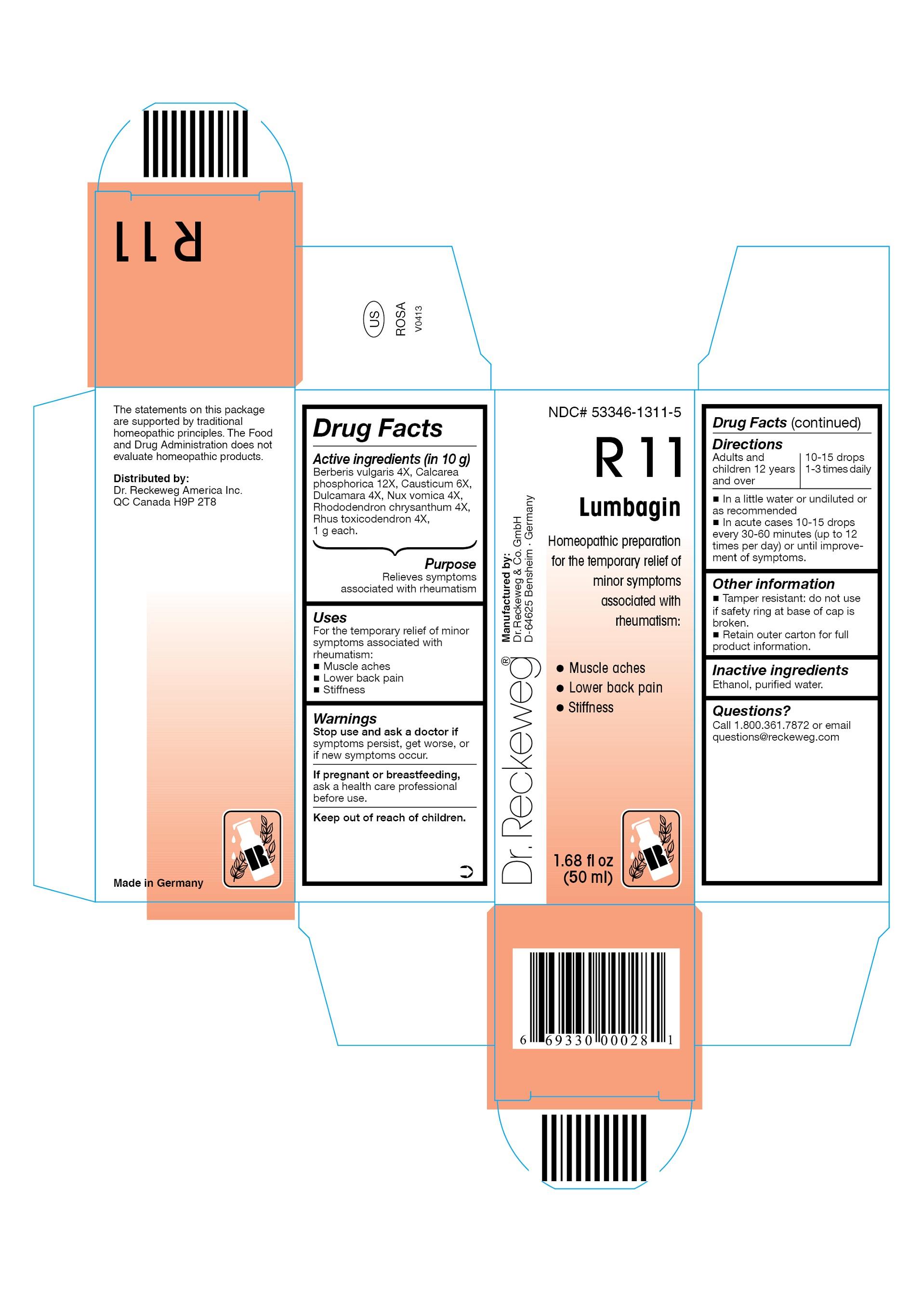 Dr. Reckeweg R11 Lumbagin Combination Product (Berberis Vulgaris 4x, Calcarea Phosphorica 12x, Causticum 6x, Dulcamara 4x, Nux Vomica 4x, Rhododendron Chrysanthum 4x, Rhus Toxicodendron 4x) Liquid [Pharmazeutische Fabrik Dr. Reckeweg & Co]