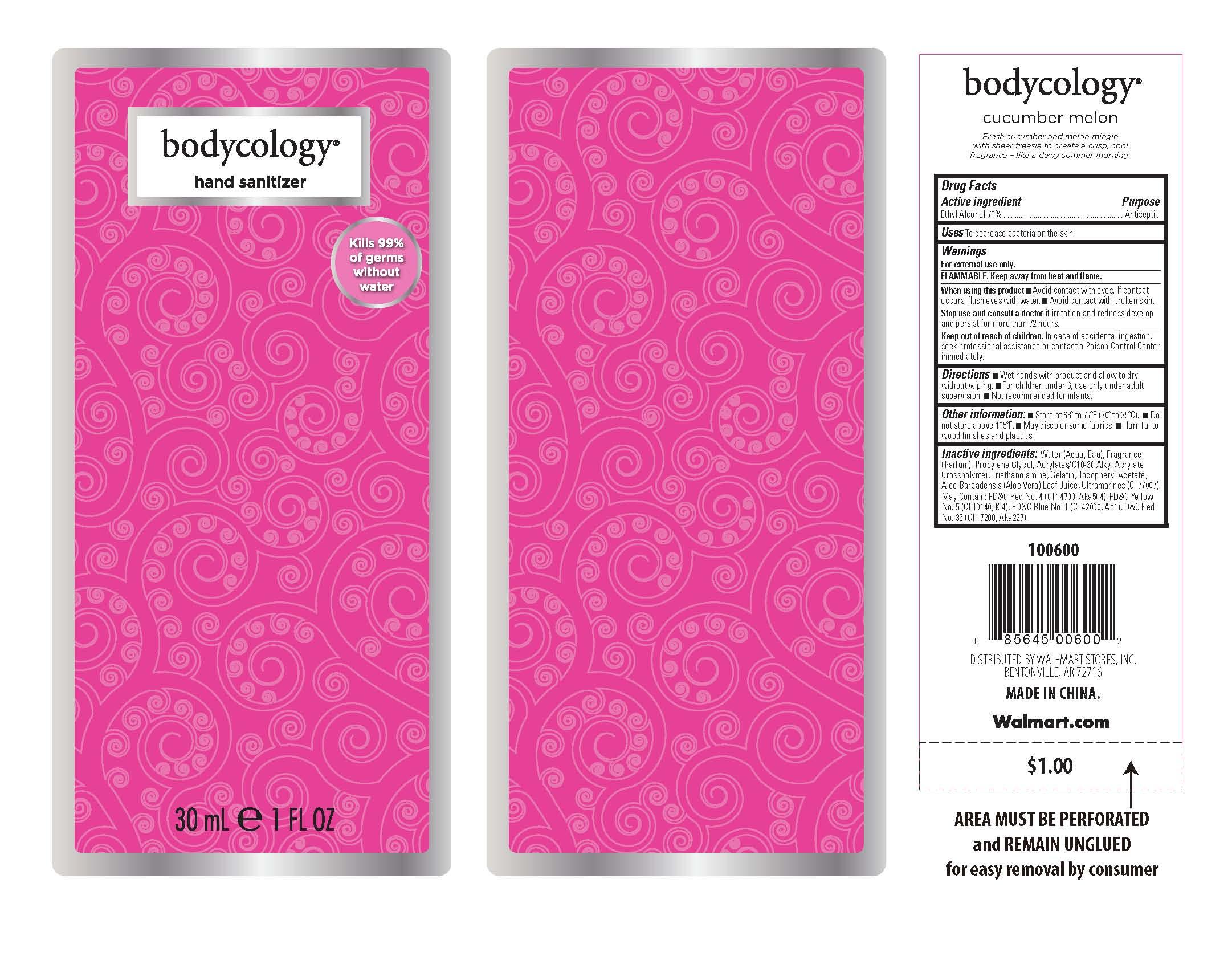 Hand Sanitizer (Ethyl Alcohol) Gel [Wal-mart Stores, Inc.]