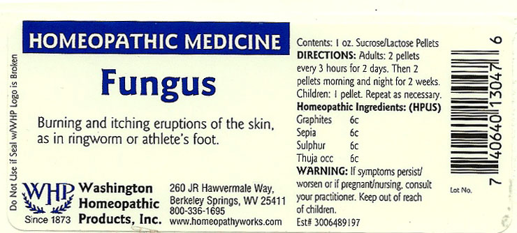 Fungus (Graphite – Sepia Officinalis Juice – Sulfur – Thuja Occidentalis Leafy Twig) Pellet [Washington Homeopathic Products]