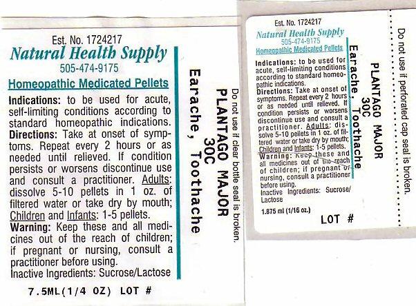 Earache Toothache (Plantago Major) Pellet [Natural Health Supply]