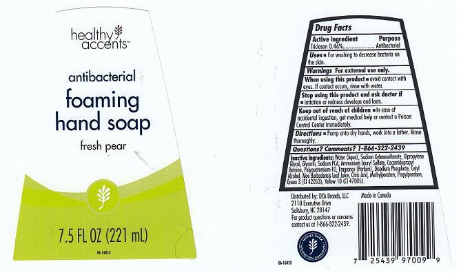Antibacterial Foaming (Triclosan) Liquid [Dza Brands Llc]