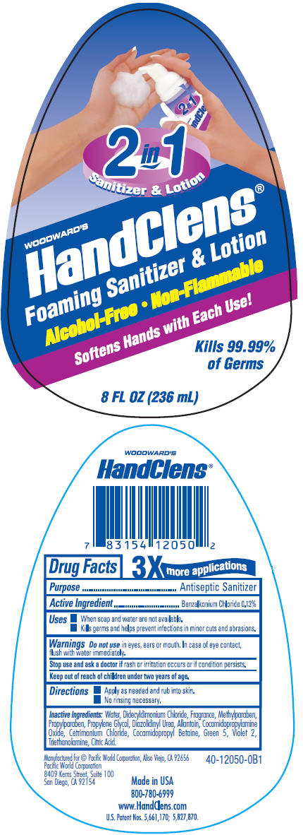 Woodwards Handclens Foaming Sanitizer (Benzalkonium Chloride) Liquid [Pacific Word Corporation]