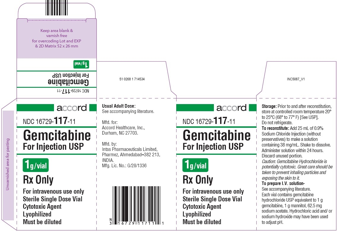 Gemcitabine For Injection 1 g  Carton for SEZ