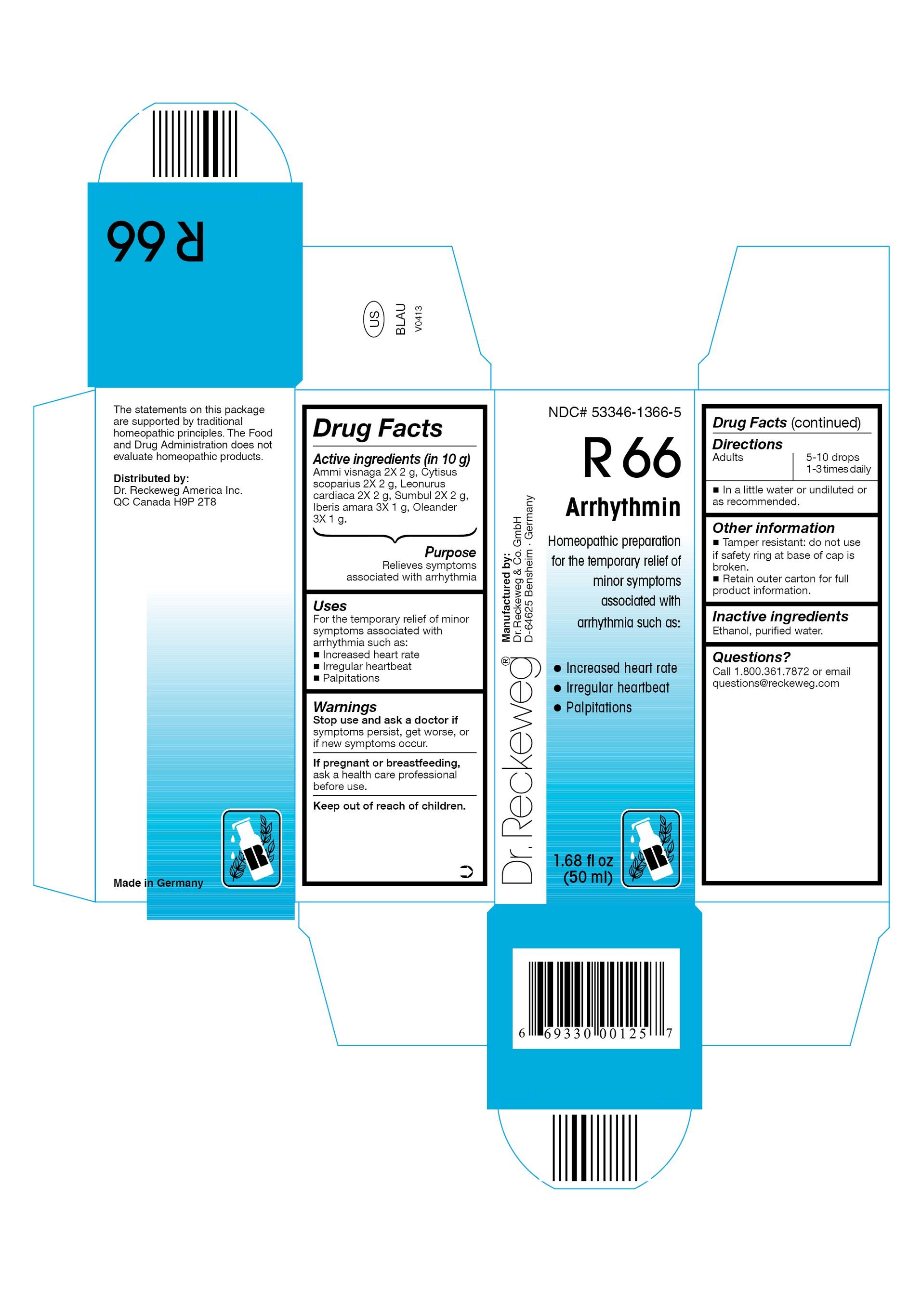 Dr. Reckeweg R66 Arrhythmin Combination Product (Ammi Visnaga 2x, Cytisus Scoparius 2x, Leonurus Cardiaca 2x, Sumbul 2x, Iberis Amara 3x, Oleander 3x) Liquid [Pharmazeutische Fabrik Dr. Reckeweg & Co]
