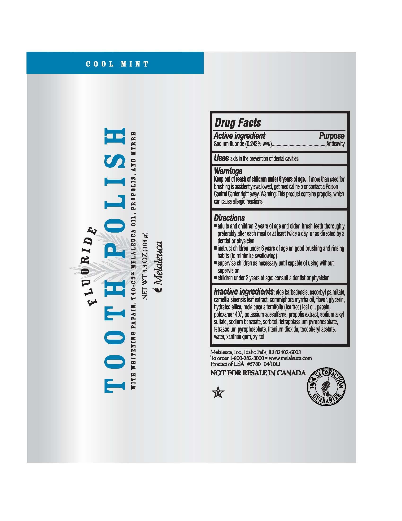 Whitening Tooth Polish (Sodium Fluoride) Paste [Melaleuca, Inc.]