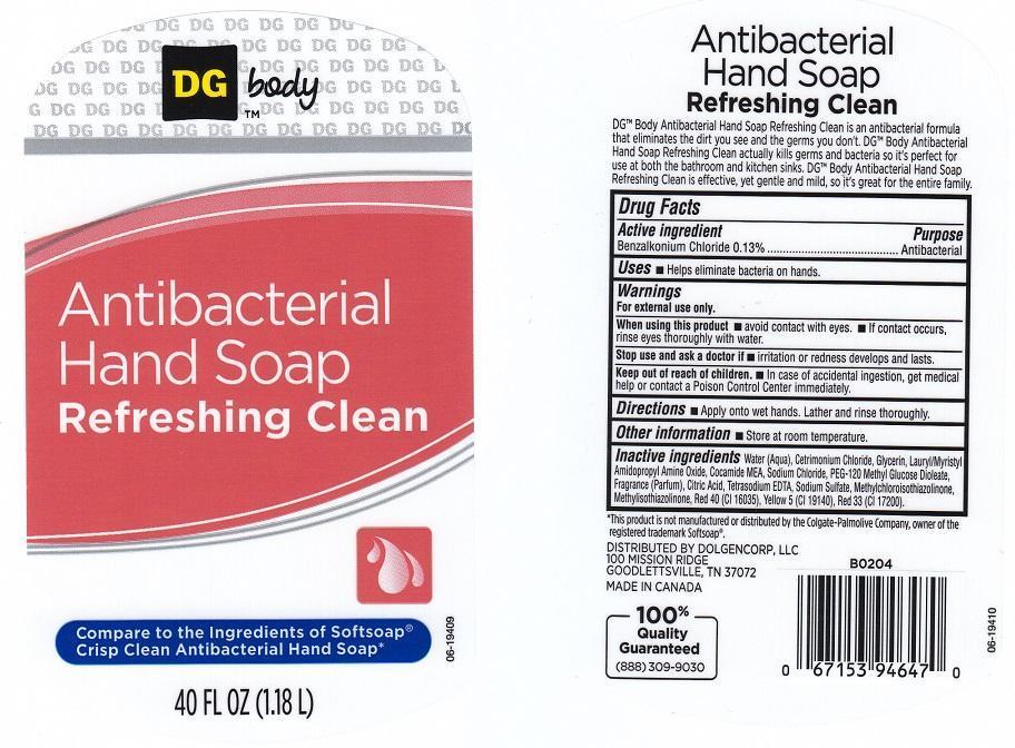 Dg Body Refreshing Clean (Benzalkonium Chloride) Liquid [Dolgencorp Inc]
