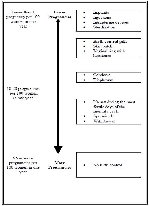 Pregnancy Diagram