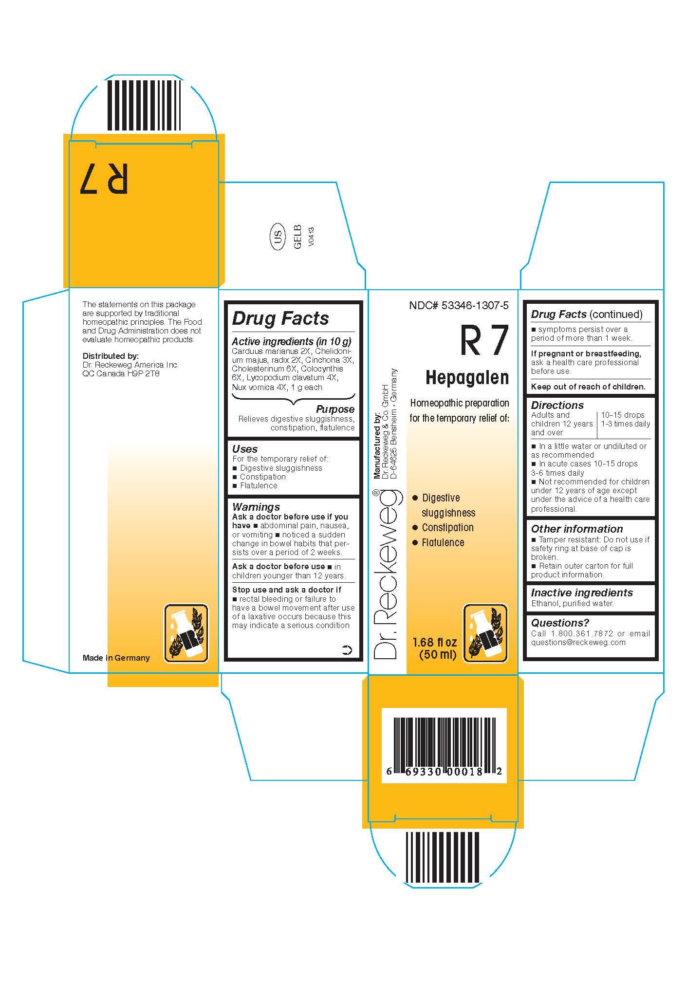 Dr. Reckeweg R7 Hepagalen Combination Product (Carduus Marianus 2x, Chelidonium Majus, Radix 2x, Cinchona 3x, Cholesterinum 6x, Colocynthis 6x, Lycopodium Clavatum 4x, Nux Vomica 4x) Liquid [Pharmazeutische Fabrik Dr. Reckeweg & Co]