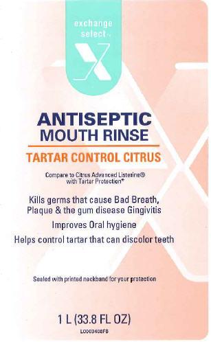Antiseptic (Eucalyptol) Mouthwash [Exchange Select]