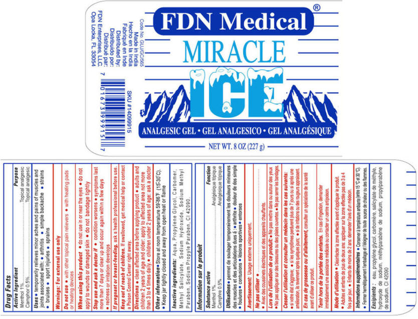 Miracle Ice (Menthol And Camphor (Synthetic)) Gel [Fdn Enterprises, Llc]
