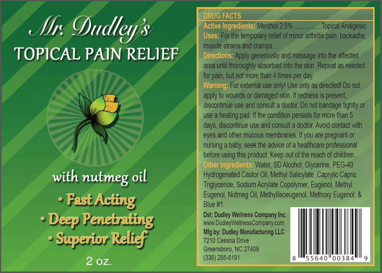 Mr Dudleys Topical Pain Relief (Menthol) Cream [Dudley Wellness Company Inc]