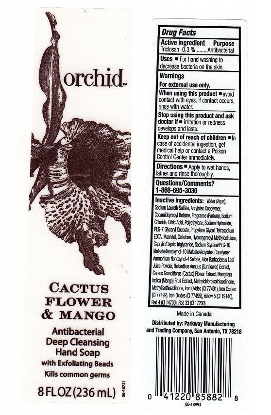 Orchid Cactus Flower And Mango (Triclosan) Liquid [H.e.b.]