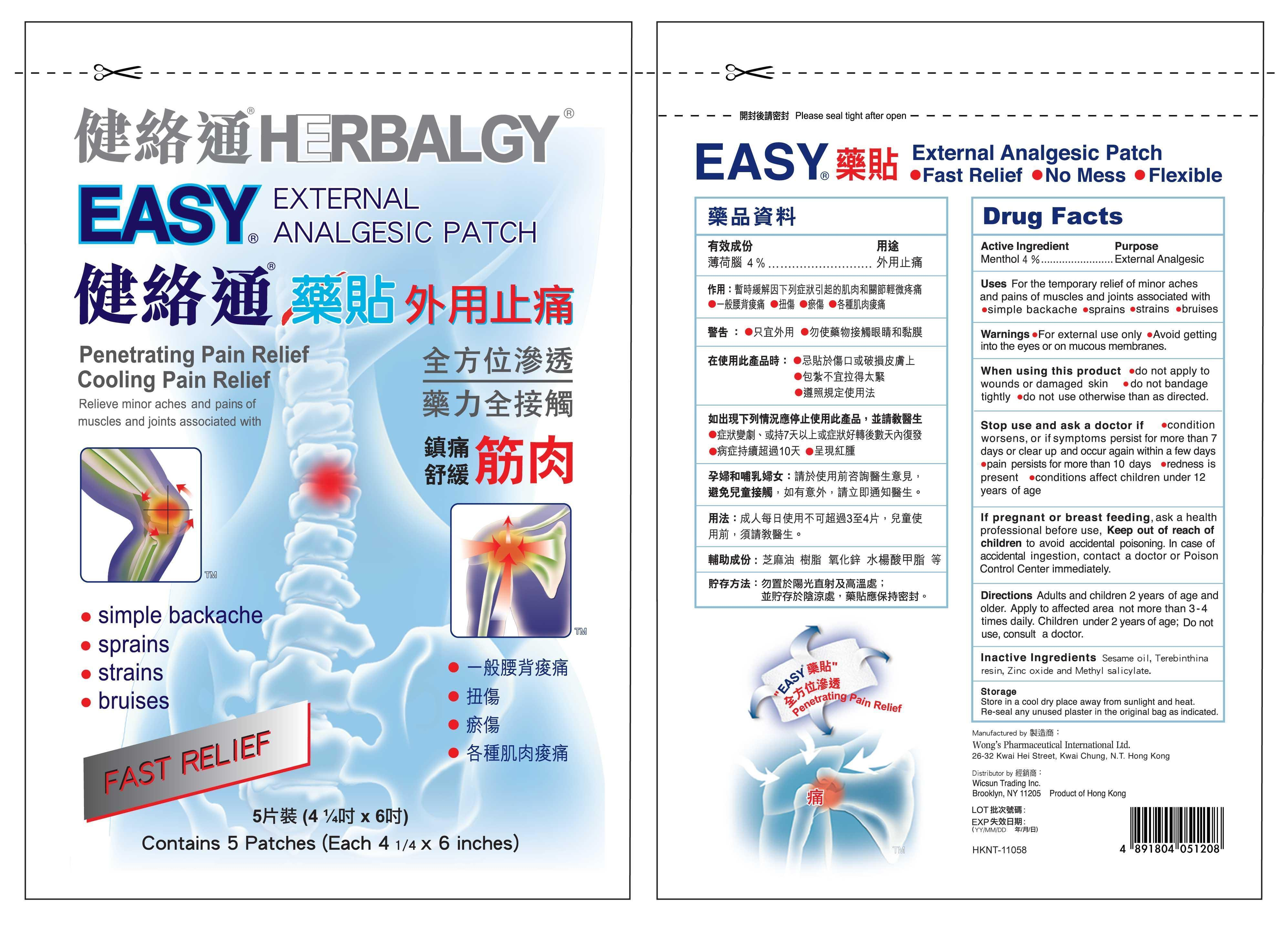 Easy (Menthol) Patch [Wong's Pharmaceutical International]