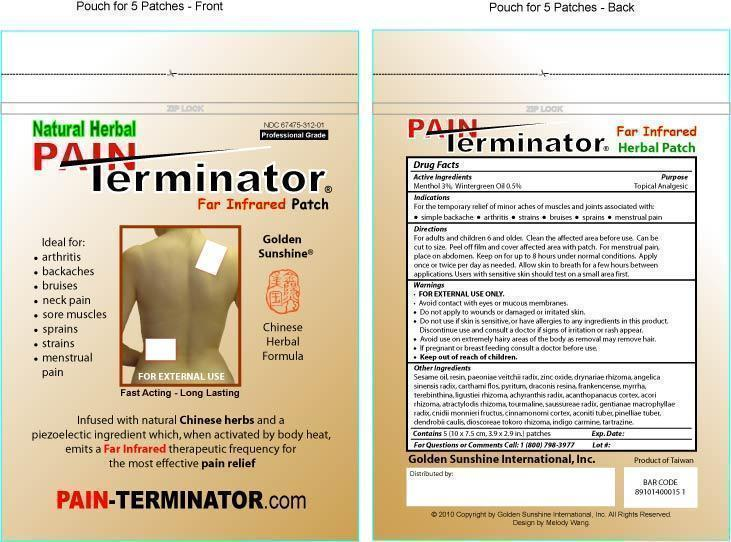 Pouch for PAIN Terminator Patches.jpg